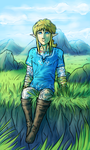 In the Hyrule Field by Wolframclaws