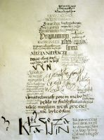 anatomy of a calligraphy 2 by Scriba