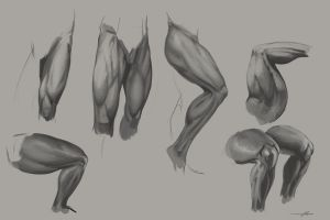 Studies - Male Thighs by SnakeToast
