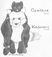 Camrone and Kasumi by DrawDesign