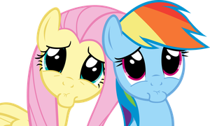 Rainbow Dash And Fluttershy PLEEEEEEASE??? Face by Spyro4287