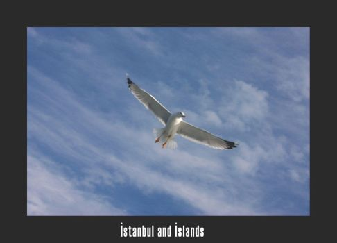 istanbul and island05 by Sideover