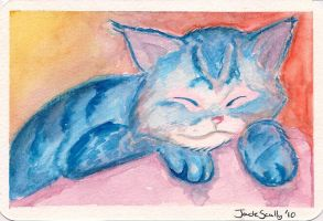 Kitty Cat Postcard by nowicantlose