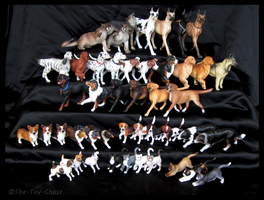 Breyer - Companion Animals by The-Toy-Chest