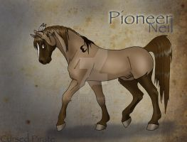 Pioneer Reference by abosz007