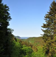 Fundy National Park by Brian-B-Photography