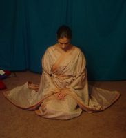 Copper Zari Kimono 16 by HiddenYume-stock