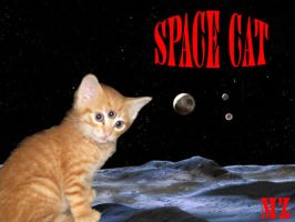 Space Cat by Maddmatthias247
