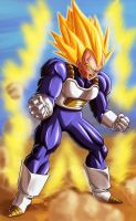Super Vegeta by vinc3412