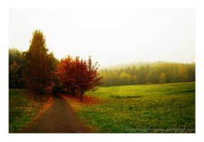 Autumn feelings no.13 by landscapesaxony