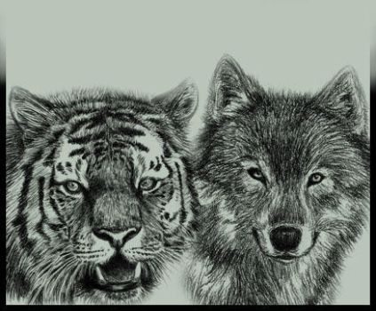 Tiger and Wolf ID by Amarevia