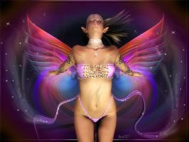 Butterfly by Aral3D