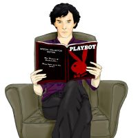 Sherlock, another boring book... by deanjen