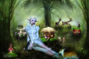 The gnome forest by annemaria48