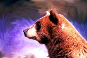 Thinking Bear by Cometa-Incandescente