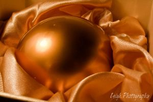 The Golden Egg by the-minds-view