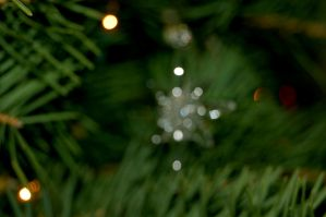 Christmas Ornament IV by Andrew-Bowermaster
