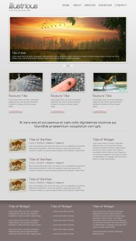 Illustrious Theme for WordPress by cpothemes