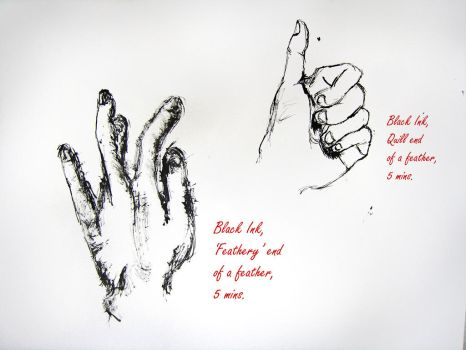 Hand study using a FEATHER by sebc
