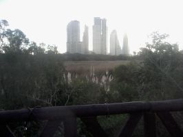 View from the Ecological Reserve to the Sky Line by cekario