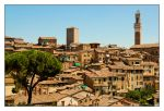 Siena sights by AtotheKay