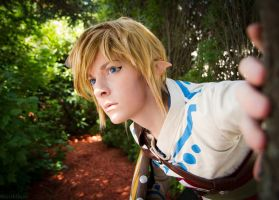 Searching Faron Woods by BleachcakeCosplay