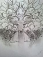 Deer by B1ackRain