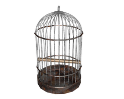 birdcage round transparent by madetobeunique