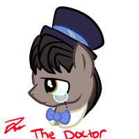 The 11th Doctor by ZoruaAWESOME