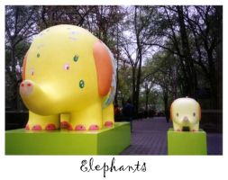 Elephants by latifolia1331