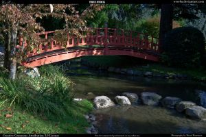 Japanese Garden 4 by Wess4u