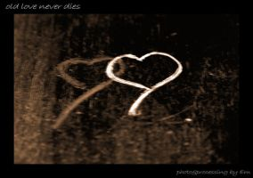 Old love never dies... by Emily-Wendy