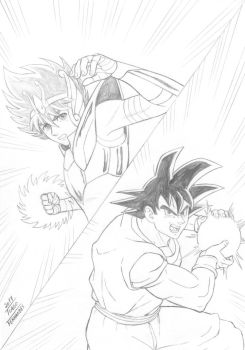 SEIYA and GOKU by TIAGO-FERNANDES