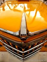 Willys Nose by Swanee3