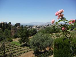 The Gardens of the Alhambra by SuperSquirrel01
