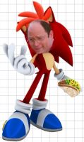 Costanza The Hedgehog by TheIransonic