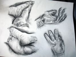 Drawing 1- Hands and Feet 3 by Zehful