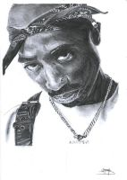 Tupac by 100PourCentDessins