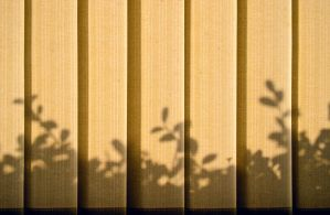 Shadows On Blinds by Retoucher07030