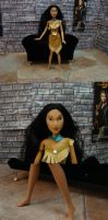 Disney Party: Pocahontas by SparklinBurgndy