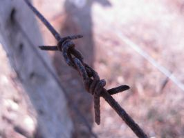 barbed wire by ultimalitho