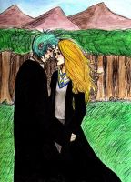 HP -- Teddy and Victoire by kiwikewte