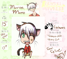Pawpal Application: Momo by Zwirrow