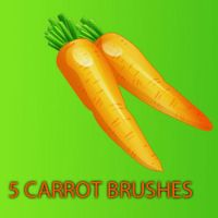 Carrot Brushes by remygraphics