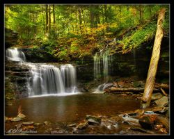 R.B. Ricketts Falls by Dracoart