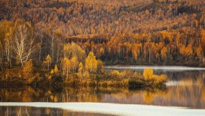 first autumn by konstantingl