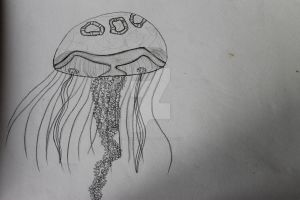 JellyFish by FranciscaMeena