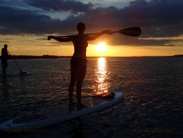 Stand and Paddle SUP 4590 by PaddleGallery