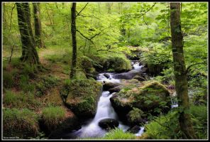 River of Green by Kernow-Photography