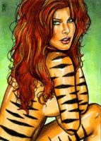 Tigra Sketch Card 2 by veripwolf